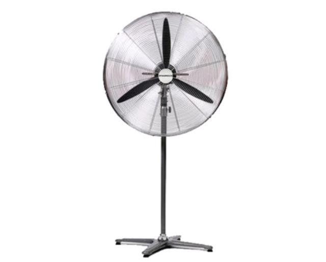 Where to find FAN PEDESTAL 600mm in Perth